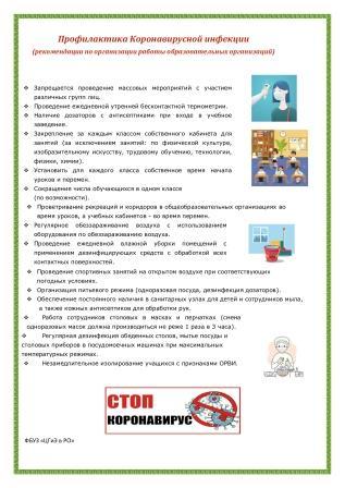 Рекомендации ро организации работы образовательных организаций 1